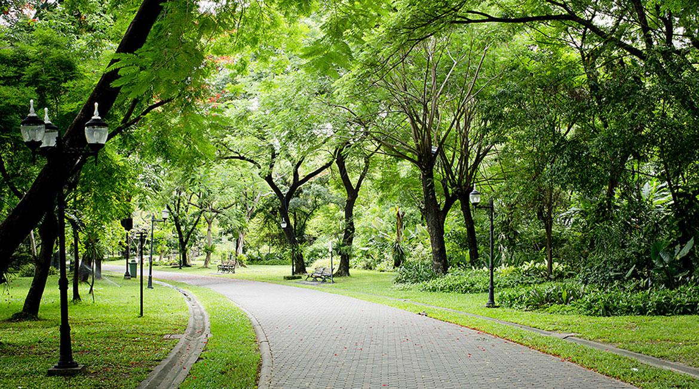Không gian mảng xanh tại Masteri Thảo Điền
