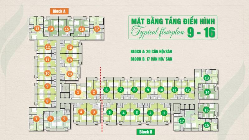 Mặt bằng và thiết kế tầng của căn hộ Ricca Gò Cát quận 9 mat bang tang du an can ho ricca go cat quan 9 1