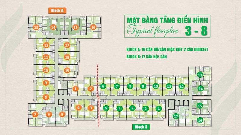 Mặt bằng và thiết kế tầng của căn hộ Ricca Gò Cát quận 9 mat bang tang du an can ho ricca go cat quan 9
