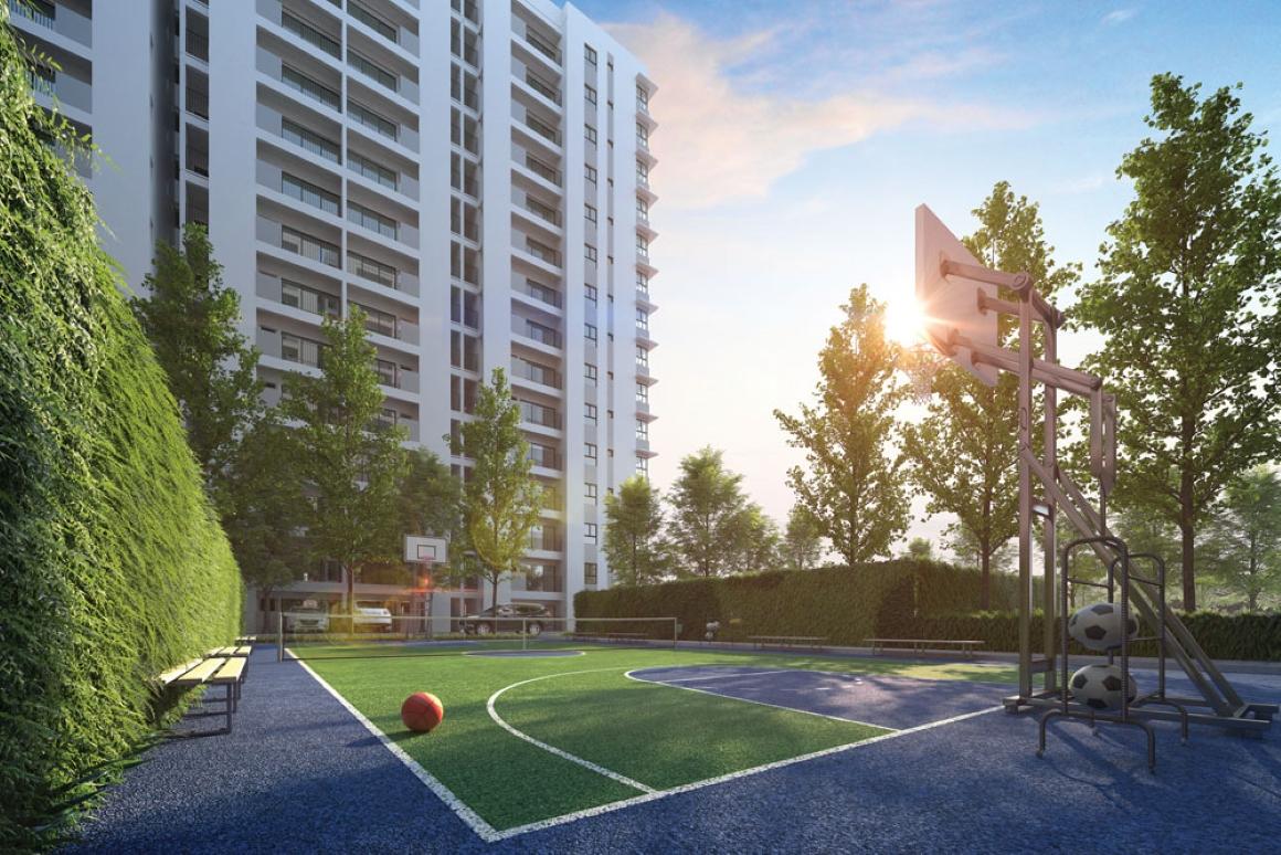 Sân bóng rổ dự án Hausnima