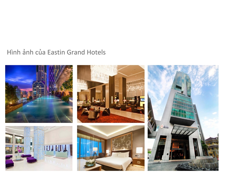 Giới thiệu Tập đoàn Absolute Hotel Services (AHS) - Đơn vị khai thác quản lý dự án The Maris Vũng Tàu don vi quan ly va khai thac du an the maris vung tau tap doan absolute hotel services vhs 0015