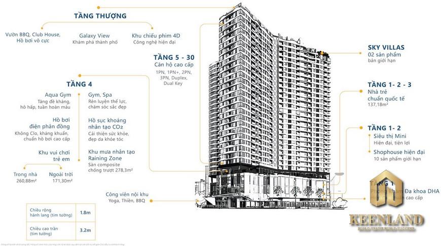 Mặt bằng dự án căn hộ D Homme