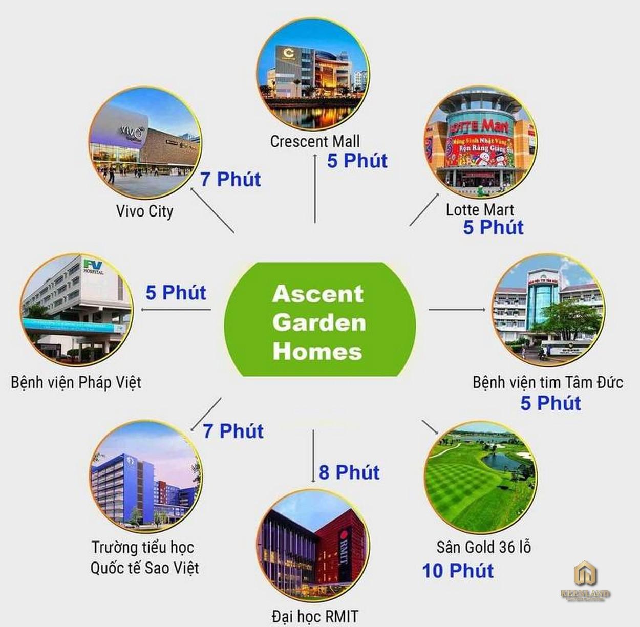 Liên kết vùng dự án Ascent Garden Homes Quận 7