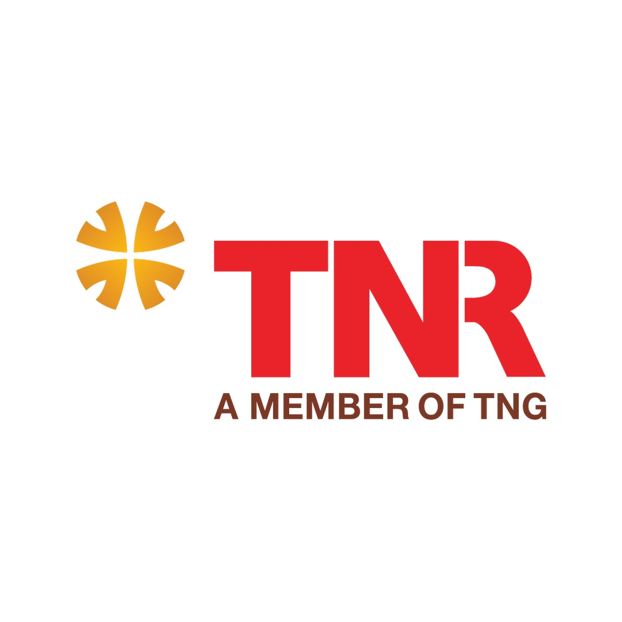 Logo đơn vị phát triển dự án The Gold View Quận 4 - TNR Holdings