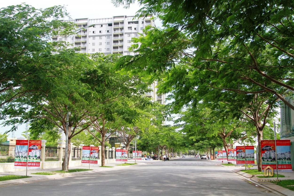 Mảng xanh khu vực xung quanh dự án Docklands Saigon Quận 7