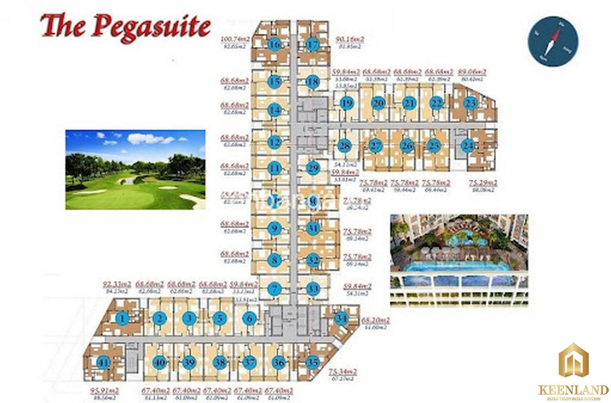 Mặt bằng dự án The Pegasuite 1