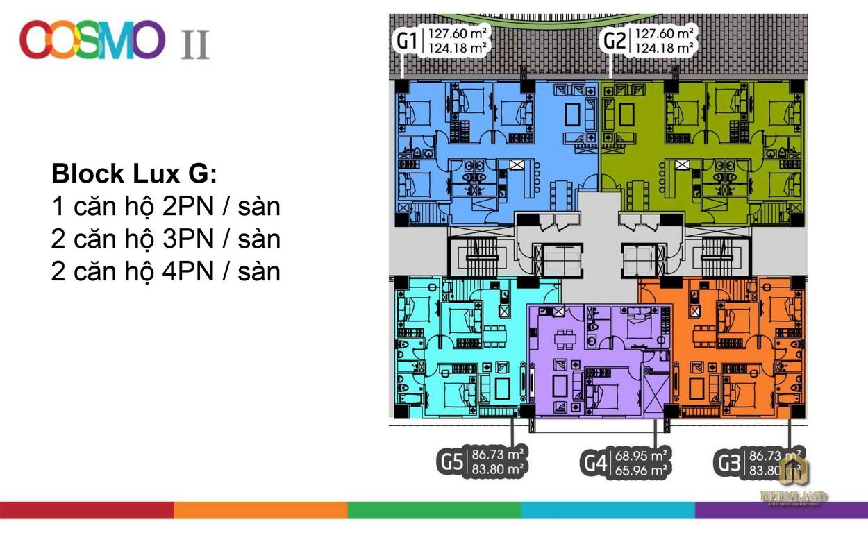 Mặt bằng Block G dự án căn hộ Cosmo City 2