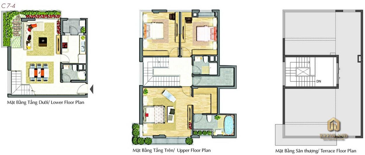 Thiết kế chi tiết căn hộ điển hình Star Hill Quận 7