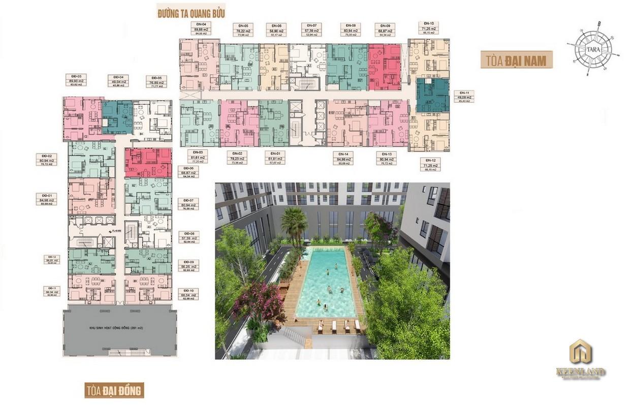 Mặt bằng chi tiết dự án Tara Residence Quận 8