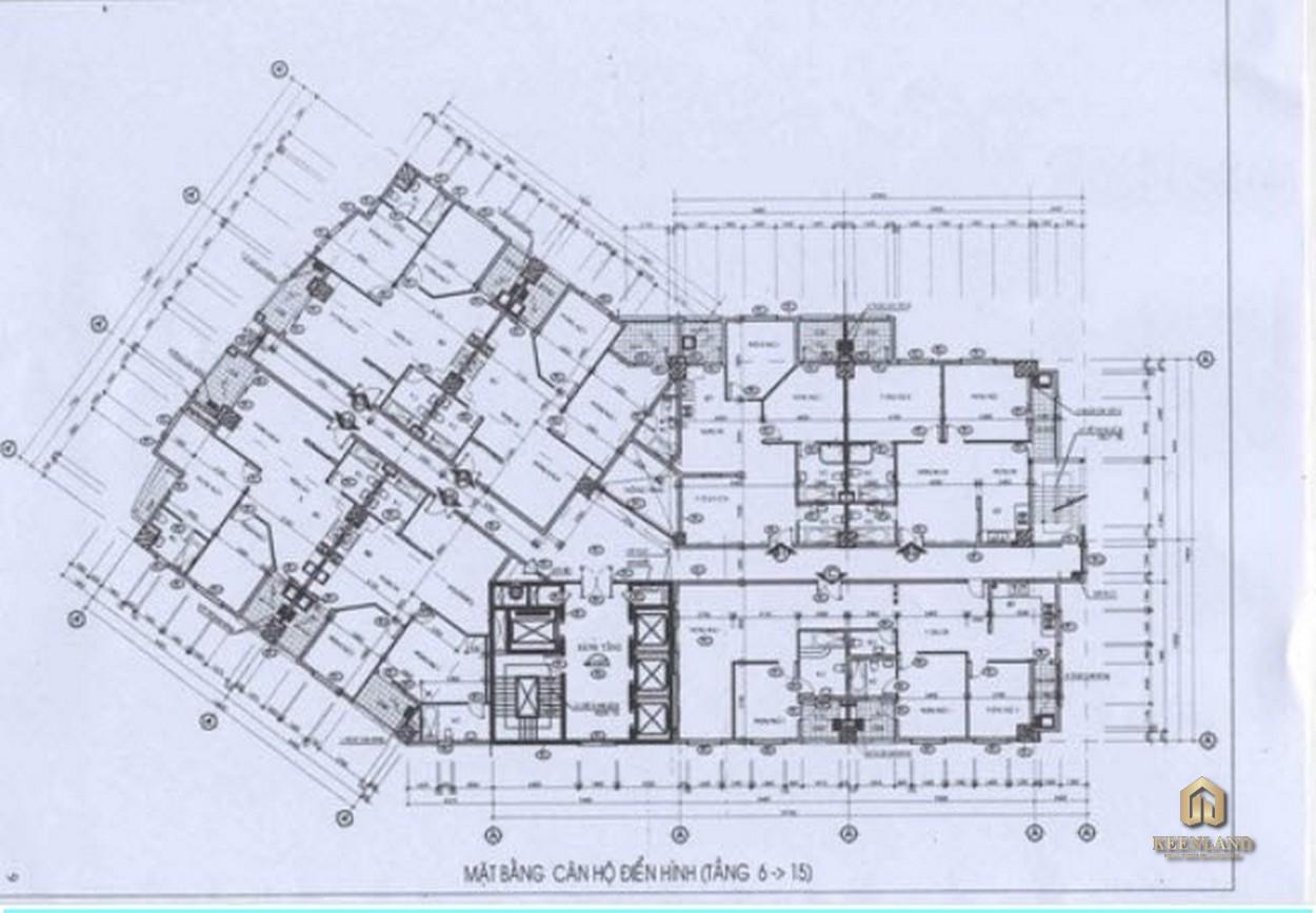 Mặt bằng điển hình dự án International Plaza