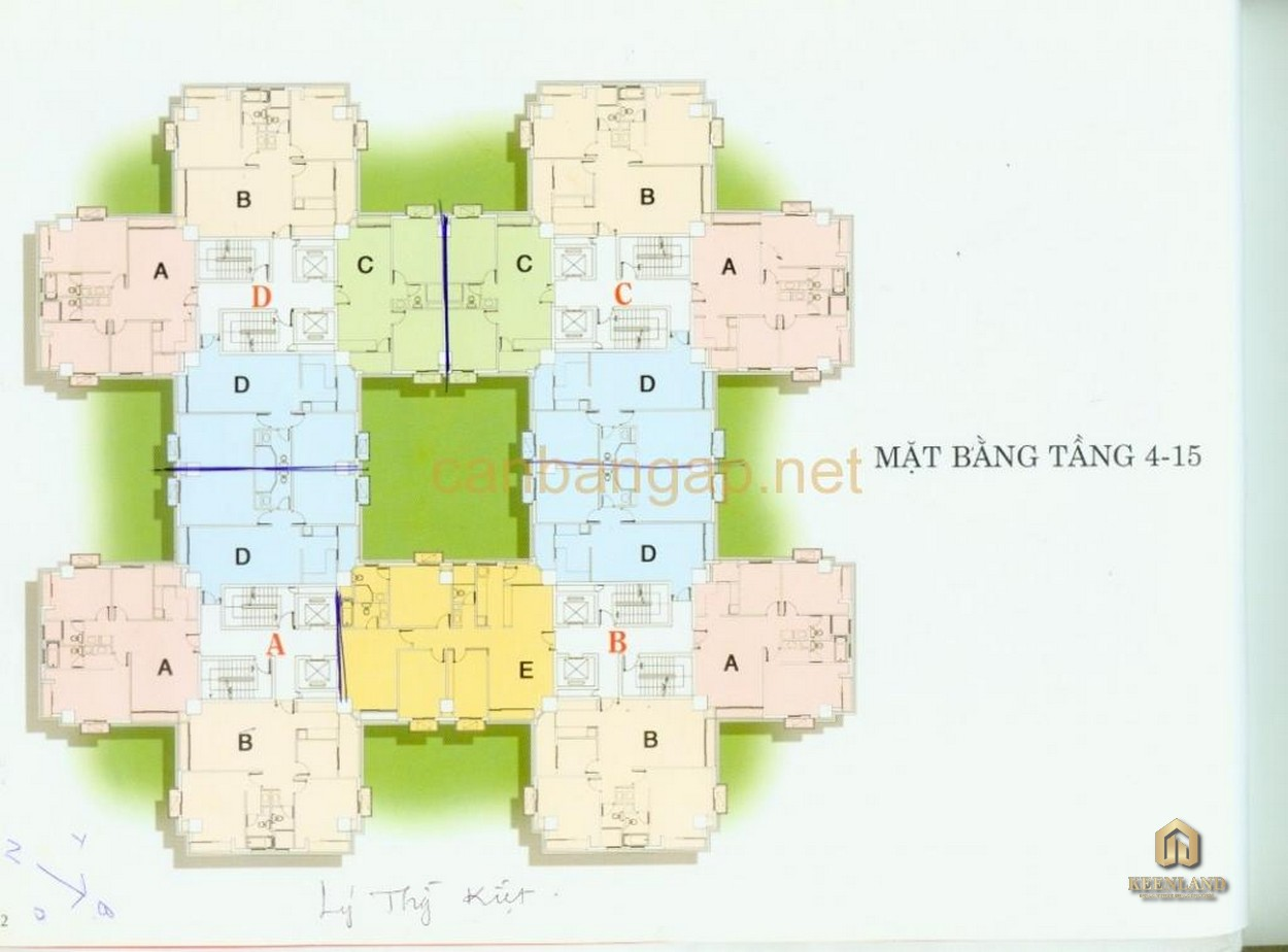 Mặt bằng tầng chung cư Thuận Việt