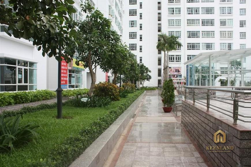 Hình ảnh thực tế khuôn viên căn hộ Hoàng Anh Gia Lai 2 Quận 7