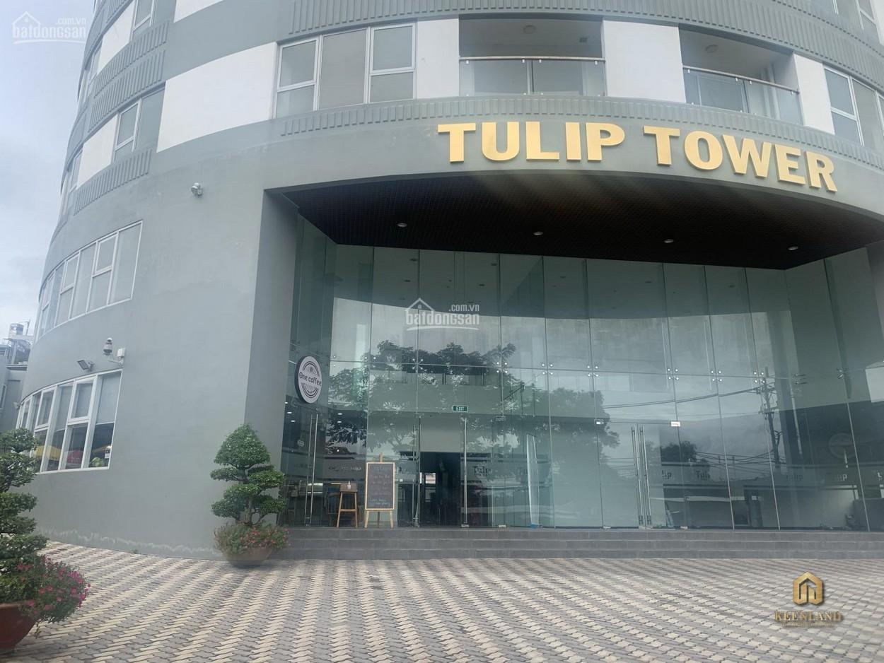 Hình ảnh thực tế dự án Tulip Tower  Quận 7
