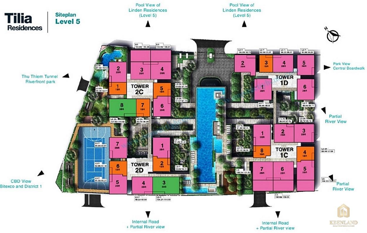 Mặt bằng chi tiết tòa tháp Tilia Residences dự án Empire City
