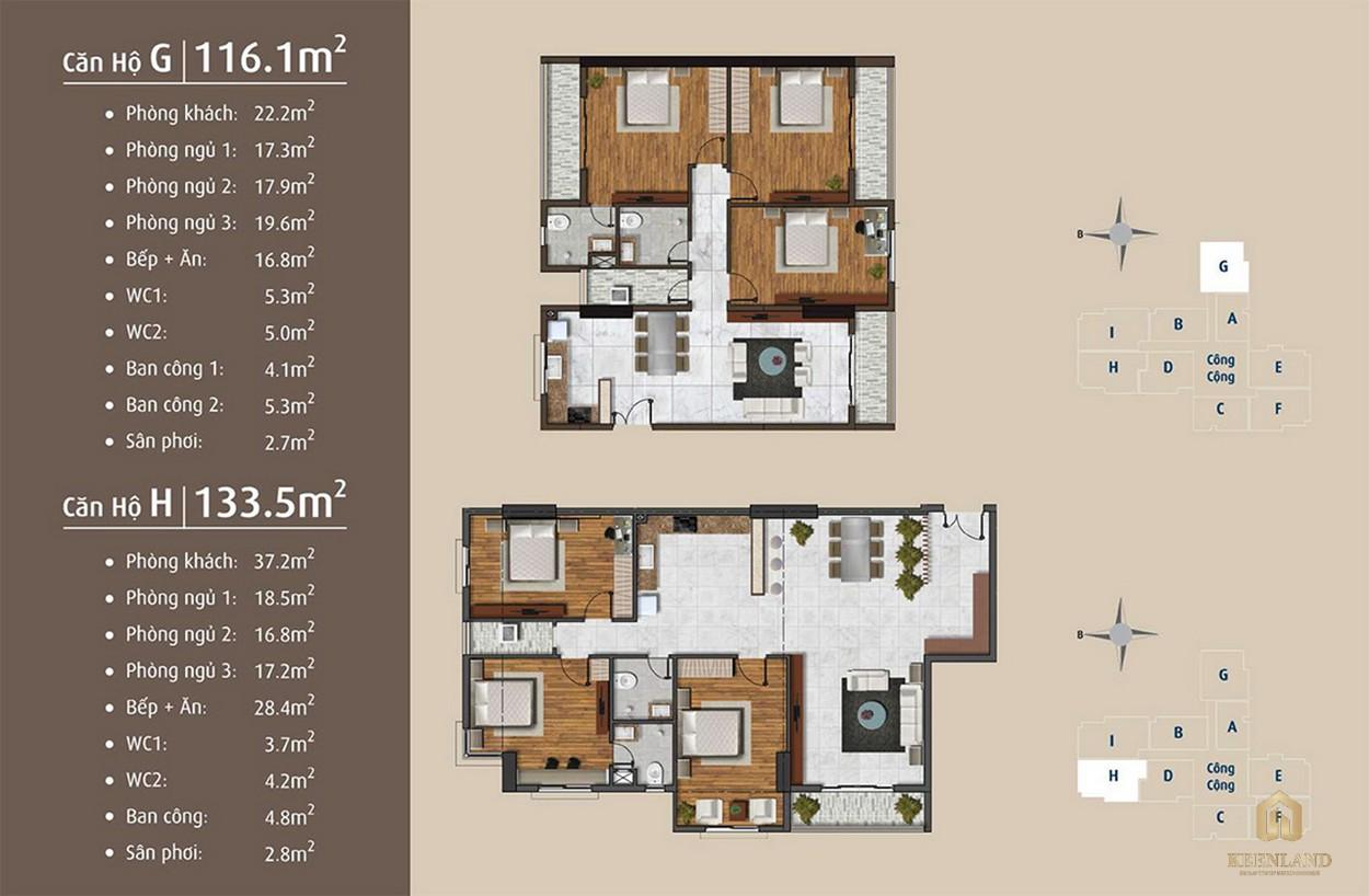 Thiết kế chi tiết căn hộ G - H dự án Golden Grand quận 2