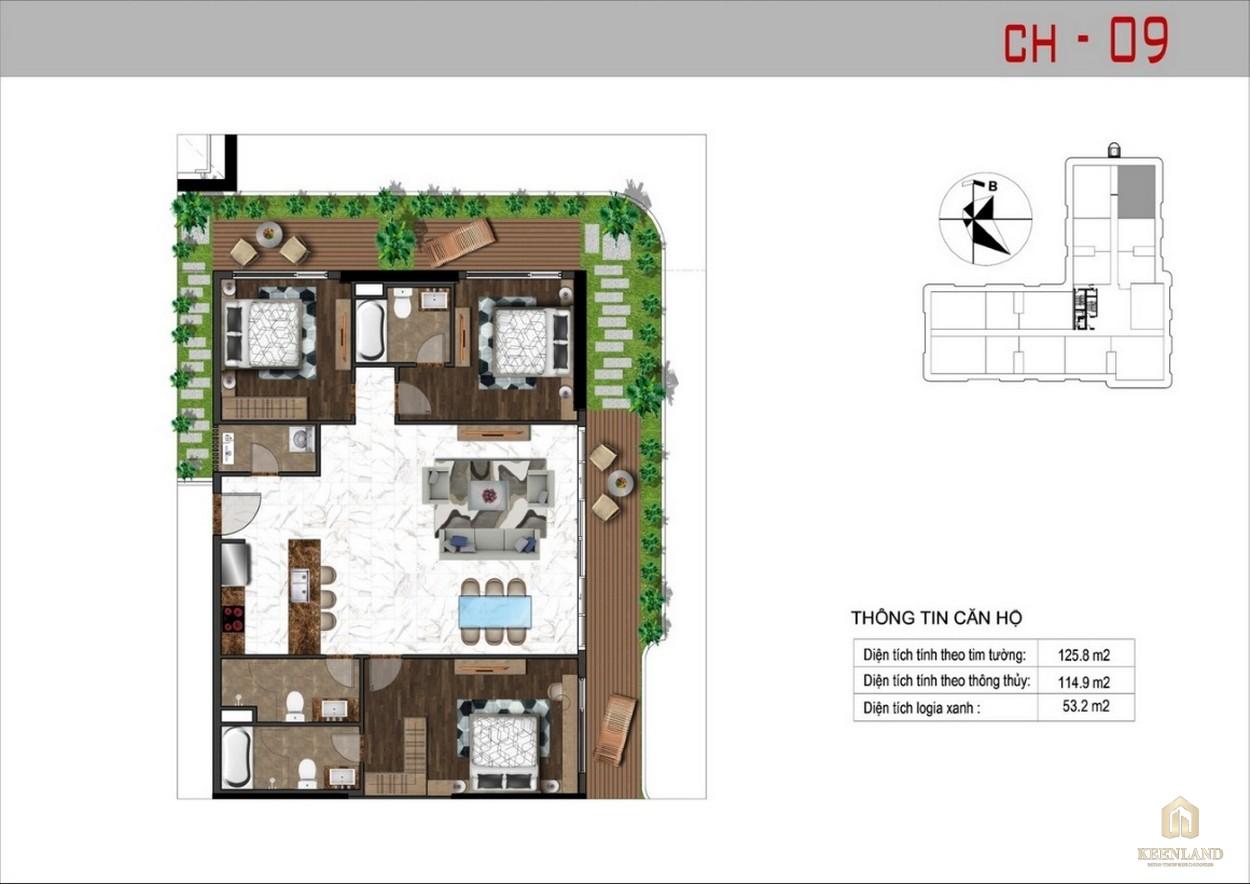 Thiết kế căn hộ 9 dự án Sunshine Tower