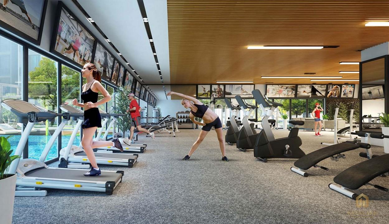 Hệ thống máy móc và dụng cụ hiện đại trong các phòng tập Yoga, Gym